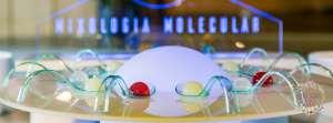 esfera-mixologia-molecular