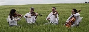 dolci-corde-cuarteto-cuerda